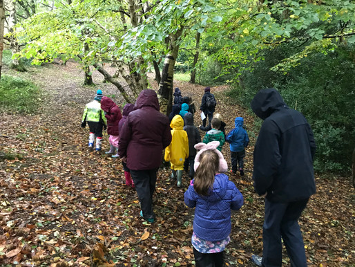 KS1 trip to Chelwood Forest