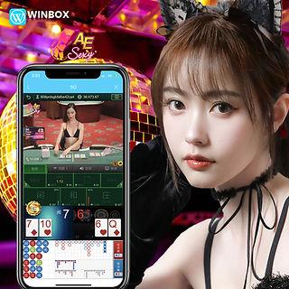 WINBOX Casino Malaysia   Casino   AE Casino