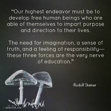 Rudolf Steiner – Society quotes and motivational bio