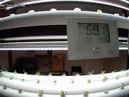 Spicecube Farm 定点カメラ設定検討