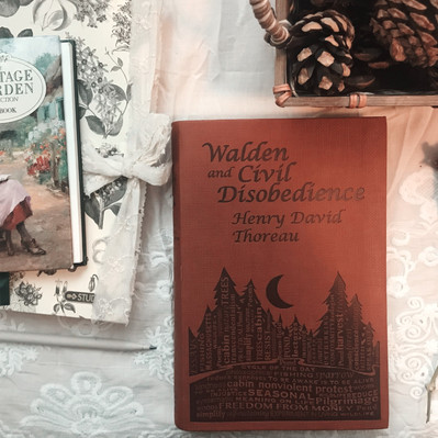 """""""Walden"""" and the Philosophies of Henry David Thoreau"""