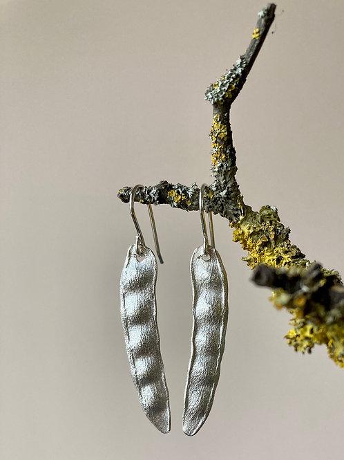 Laburnum seed earrings