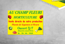 Akilux---Au-champs-Fleuri.jpg