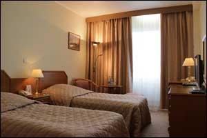 Гостиница Измайлово 2 кровати бизнес