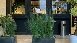 Praline & Oregano Cafe and Patisserie, Café dalam komplek hotel yang strategis