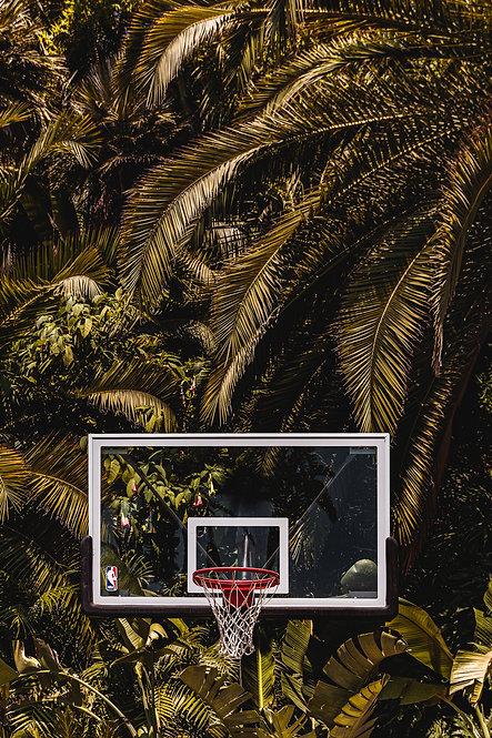 Googie: Sheats-Goldstein Residence by John Lautner Basketball Court