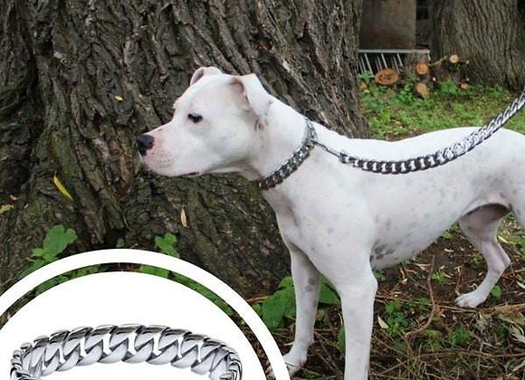 "THE ""CAESAR"" DOG COLLAR & LEASH COMBO"
