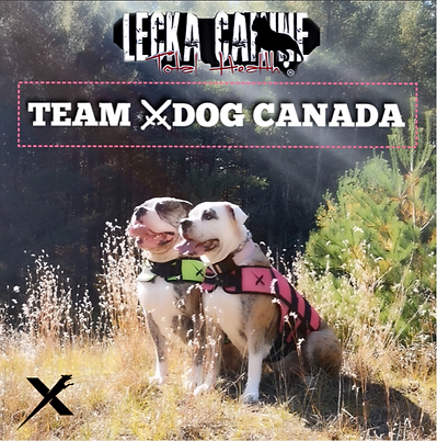 Team X Dog Canada.PNG