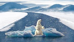 ¿Cambio climático?... ¿Qué estamos haciendo?