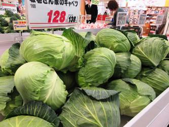 桶川産野菜◆収穫祭