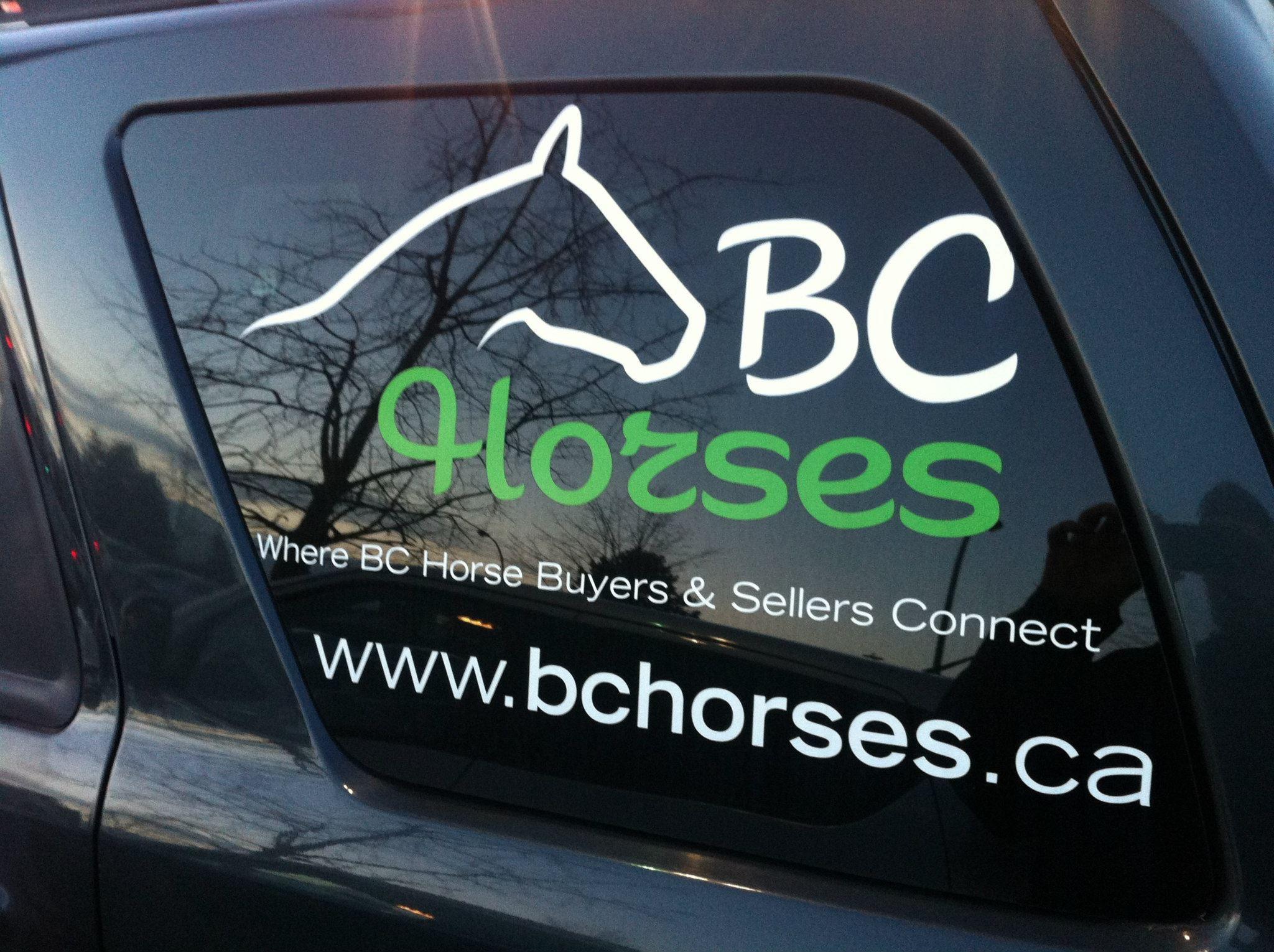 BC Horses