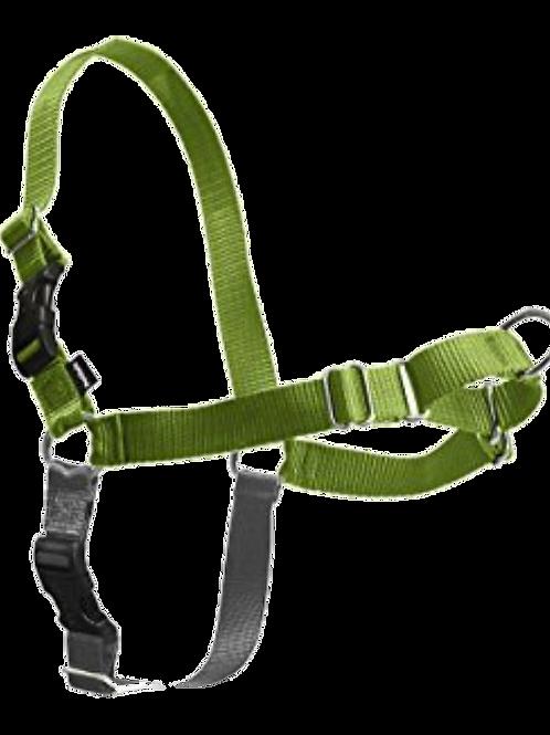 Easy-Walk Harness