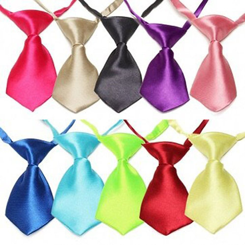 Colored Neck Tie