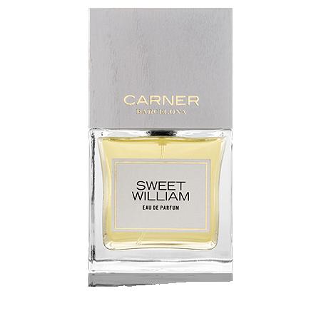 Carner Barcelona Sweet William