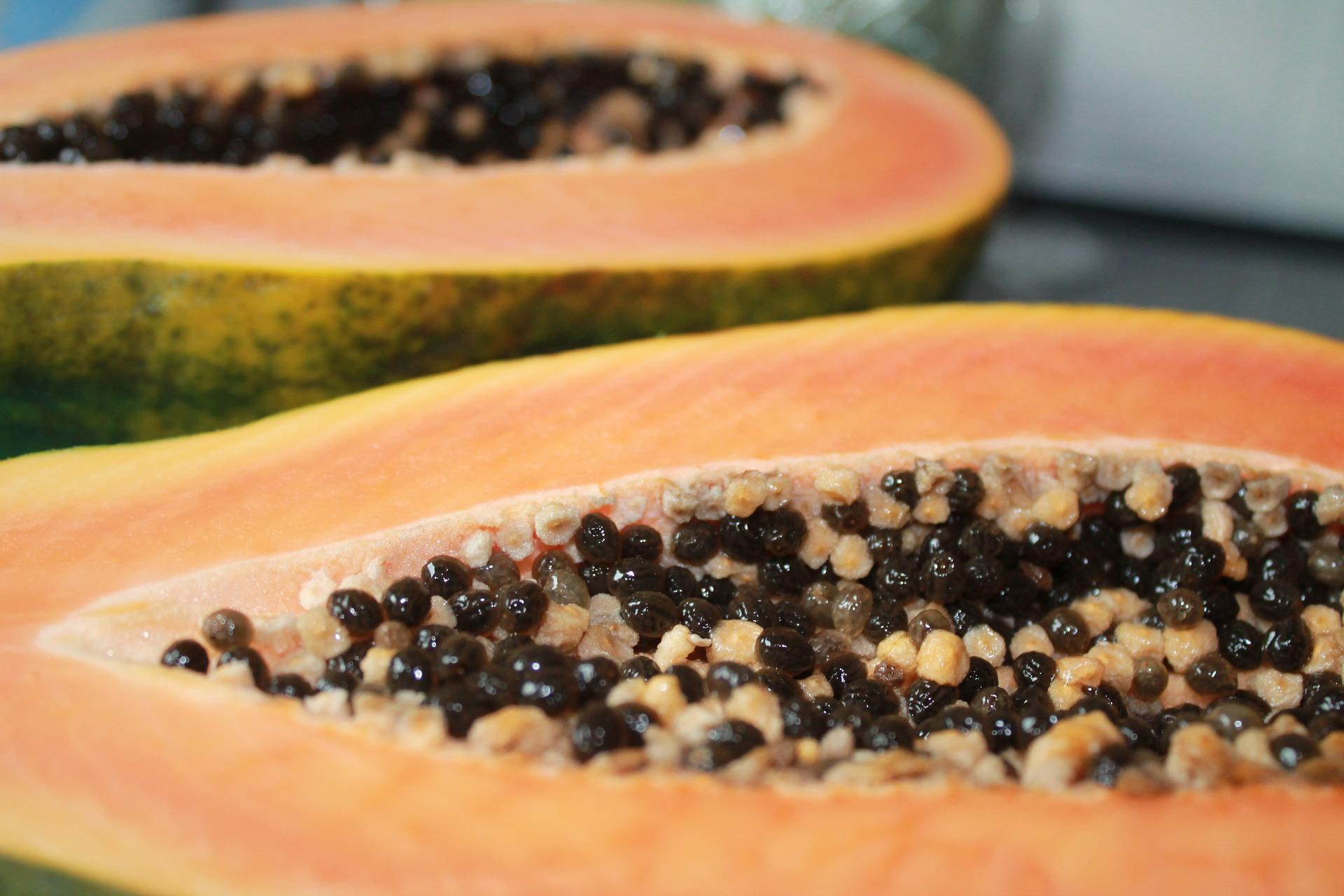 papaya-885839_1920.jpg