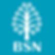 logo_bsn.png
