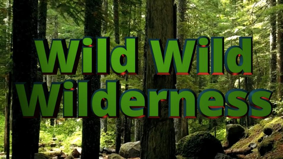 Wild Wild Wilderness!