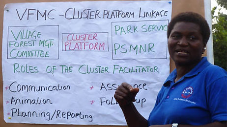 ClusterFacilitator.jpg