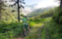 Mountainbiken (c) tiqa.at.jpg