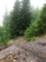 X04 Rodeoschleife 01_edited.jpg