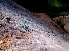 3 053 Vertical Adventure Erzberg Dirtrun