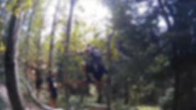 H33 Shadow Forest 04.jpg