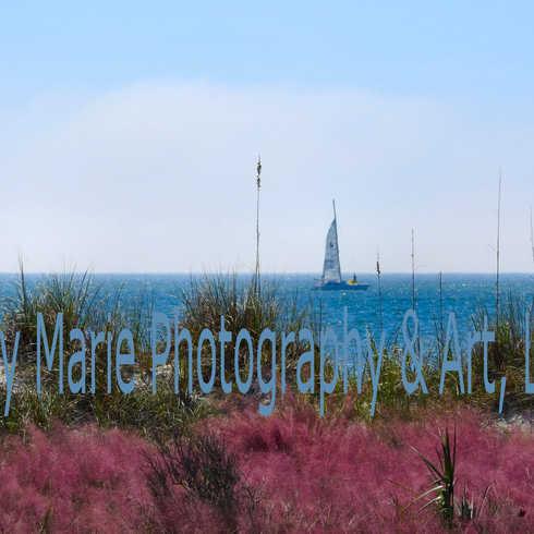 Honeymoon Island Sailboat