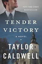 "Review of ""Tender Victory"" by Patricia Nolan Stein"