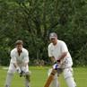 Whimple_cricket__SDP1003.jpg