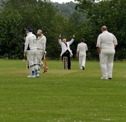 Cricket_2013_053.jpg
