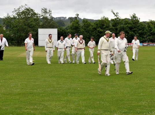Cricket_2013_063.jpg