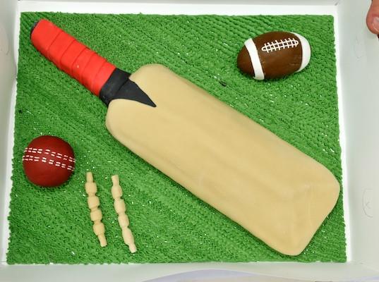 Cricket_2013_067.jpg