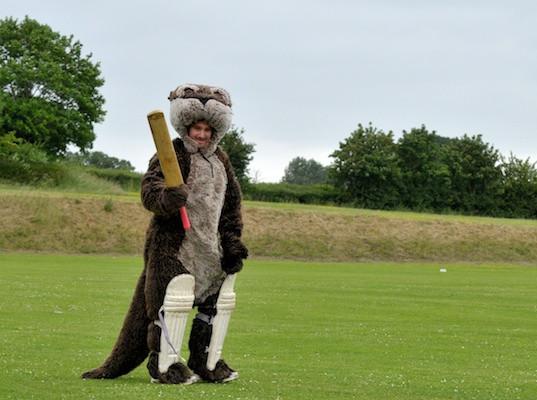 Cricket_2013_040.jpg