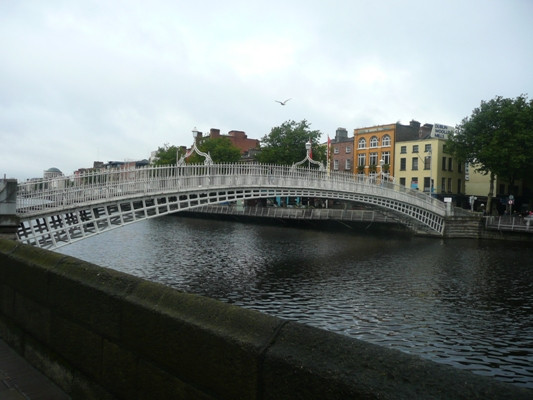 Leinster_055.JPG