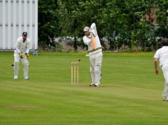 Cricket_2013_018.jpg