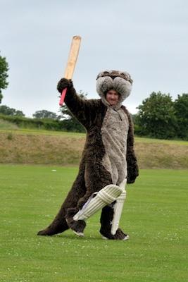 Cricket_2013_042.jpg