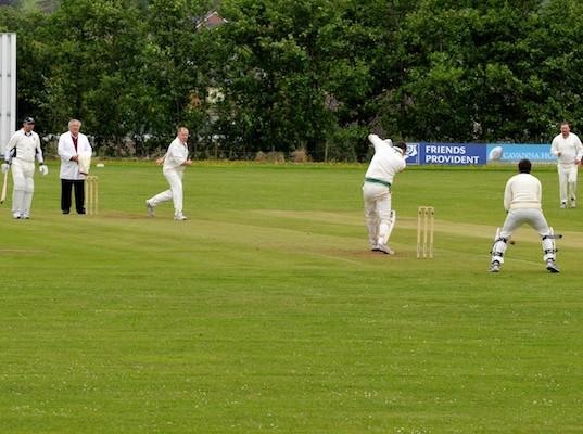Cricket_2013_089.jpg