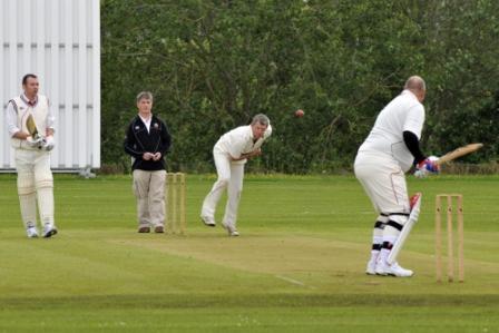 Whimple_cricket__SDP0967.jpg
