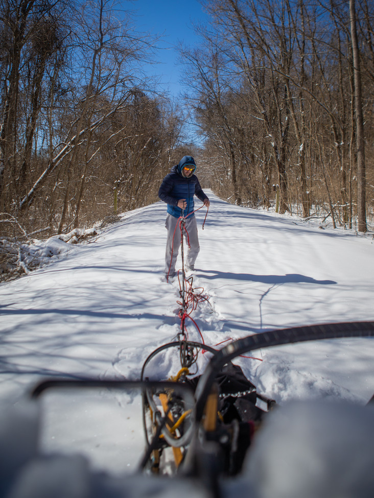 Richie Camden lays out the line to attach his dog's harnesses, preparing to get his nine-dog team ready to go on a training run on untouched snow of the Katy Trail