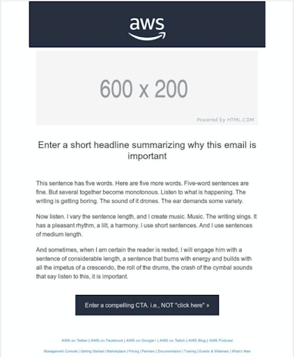 Amazon email template