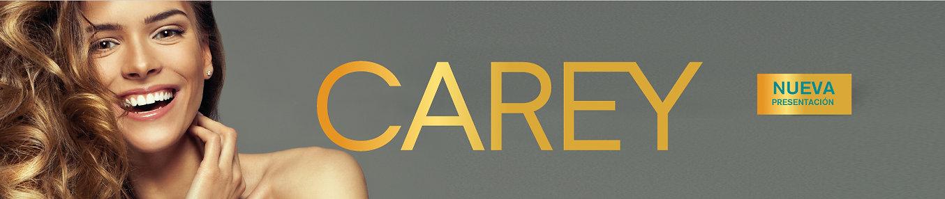 carey-web-productos.jpg