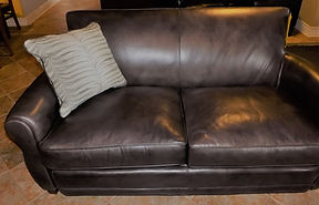 Leather loveseat and designer pillow