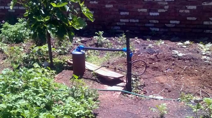 Dank des Bohrlochs / Brunnens gedeihen die Pflanzen im Garten der Suppenküche