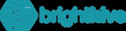 brighthive-2019-interim-logo-horizonal-b