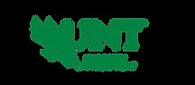 lettermark_wordmark_diving_eagle_combo_g