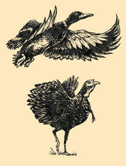Purina Prime Bones Duck and Turkey