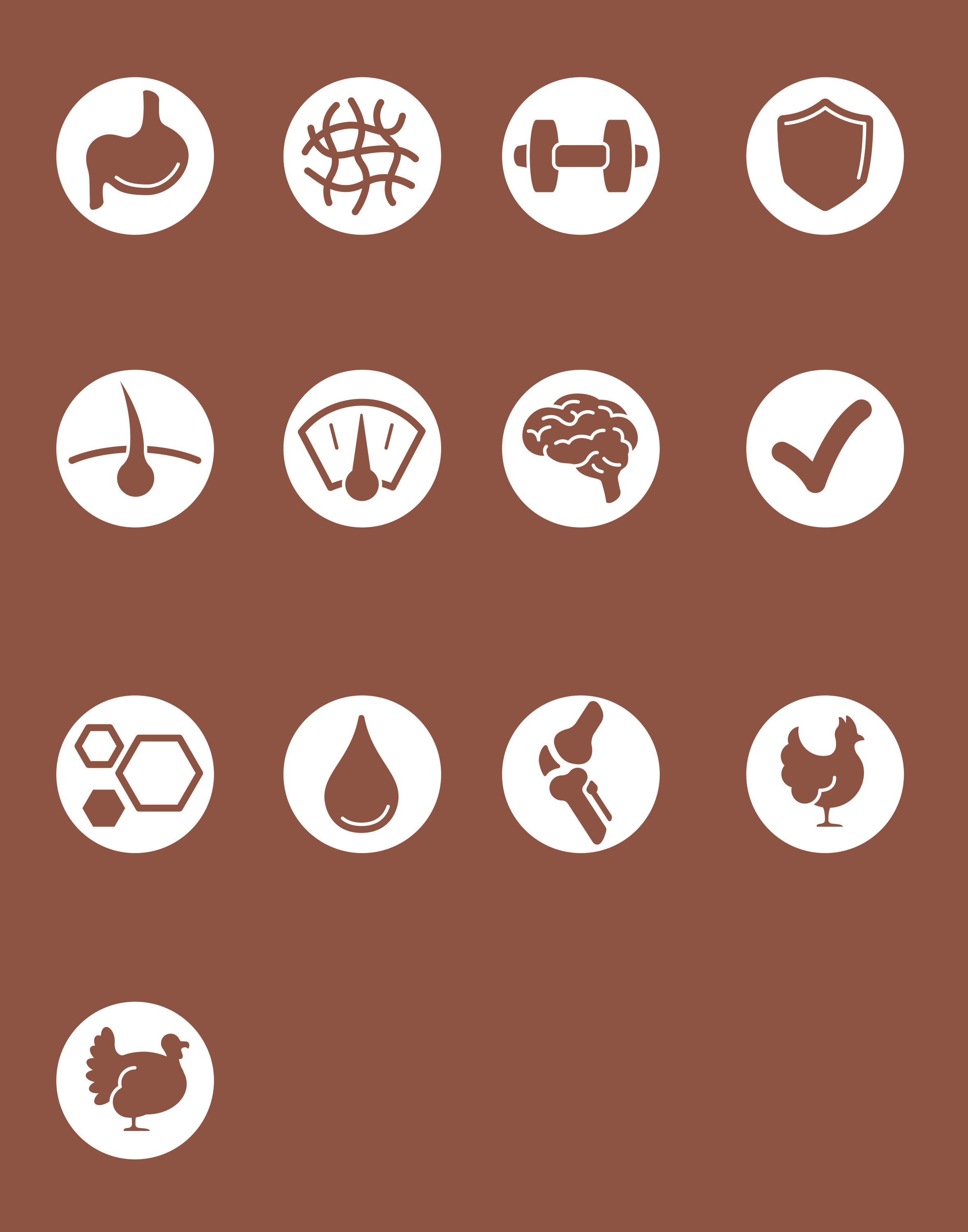 Cat Chow Icons