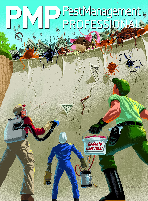 PMP Cover Illustration