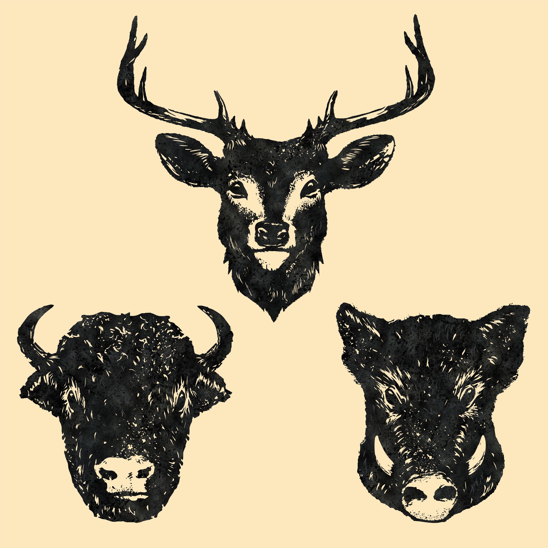 Purina Prime Bones Venison, Bison, and B