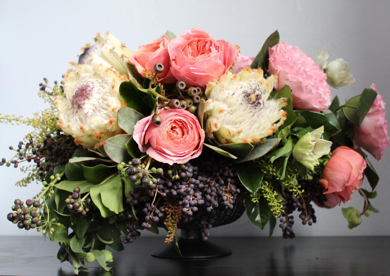 protea, privet, david austin roses...